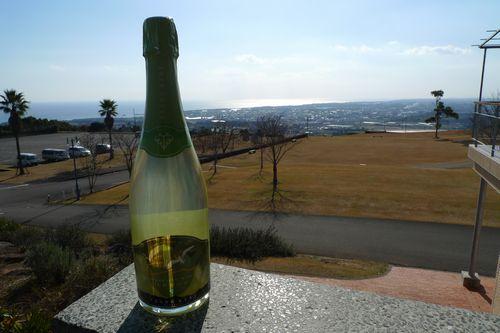 梅スパークリングワイン